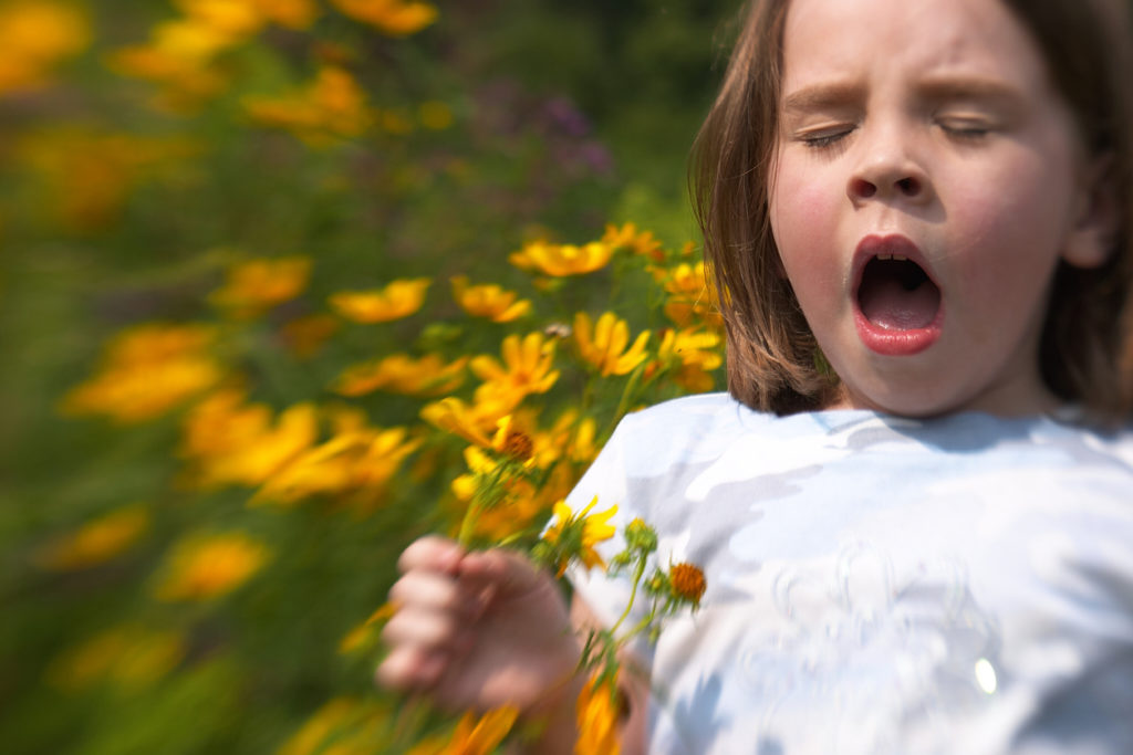 A little girl sneezes in a field full of flowers - are allergies genetic? Her siblings may be allergic to similar things as she is.
