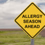 "A yellow road sign that says ""Allergy Season Ahead."" Sublingual immunotherapy may help allergy sufferers get the relief they need."